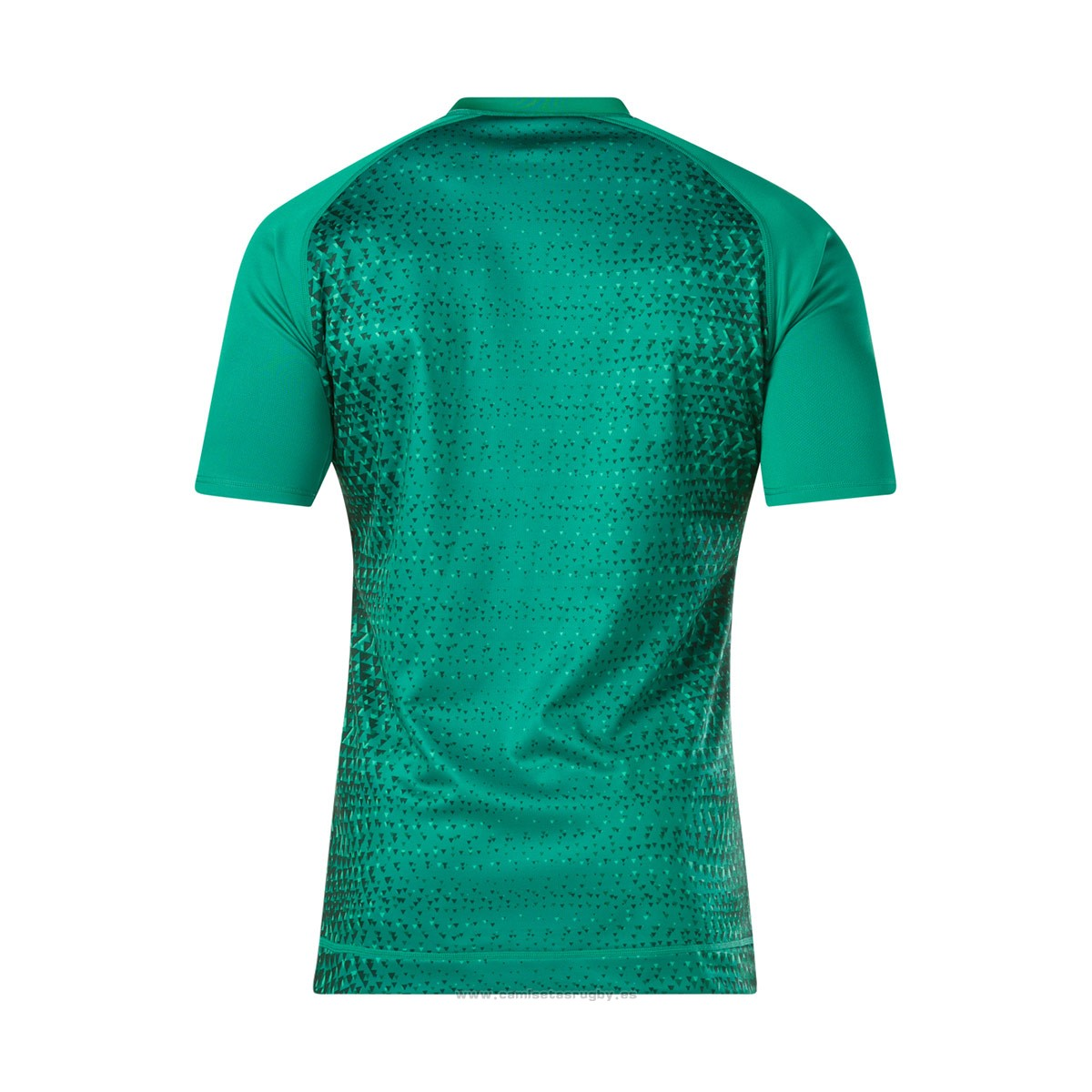 Camiseta Irlanda Rugby 2019 Local